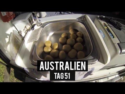 Noosa erkunden - Tag 51 - AUSTRALIEN - WORK & TRAVEL - BACKPACKING