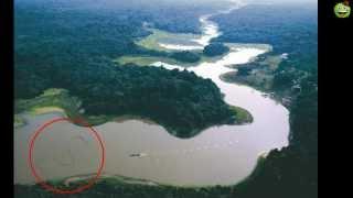 Самая большая змея в мире (НОВЫЕ КАДРЫ)