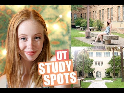 BEST UNIVERSITY OF TEXAS STUDY SPOTS | JustAli