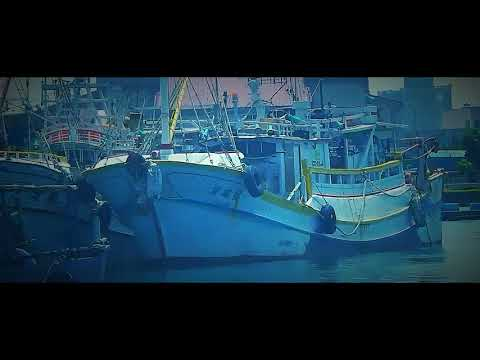 Pasar pelelangan Pelabuhan Taichung port