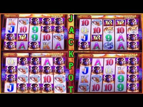 MY BIGGEST JACKPOT ON WONDER 4 BUFFALO GOLD SUPER FREE GAMES