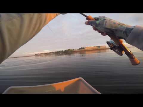 Sunrise Striper Fly Fishing At Castle Island