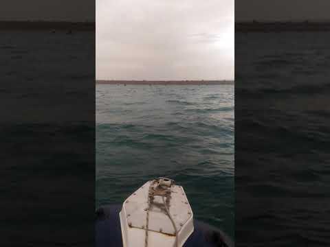 Рыбалка Крым Кача