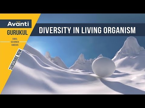 B1.1.1 Diversity in living organism (Hindi)