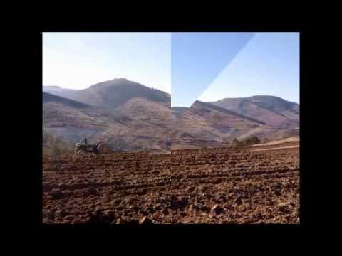 Sinop Dikmen, Kayışlı, Çakırlı ve Hacivat Köyleri