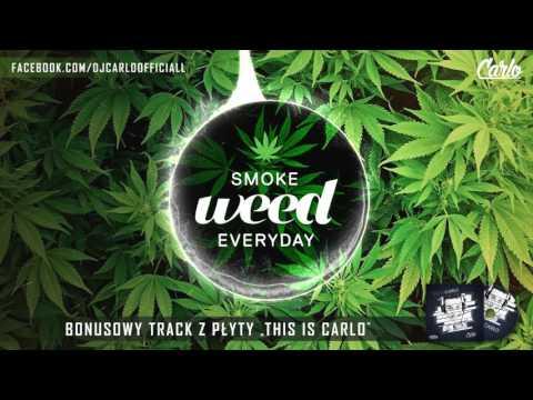 DJ Carlo - Smoke Weed Everyday (Original Mix) FREE DOWNLOAD !