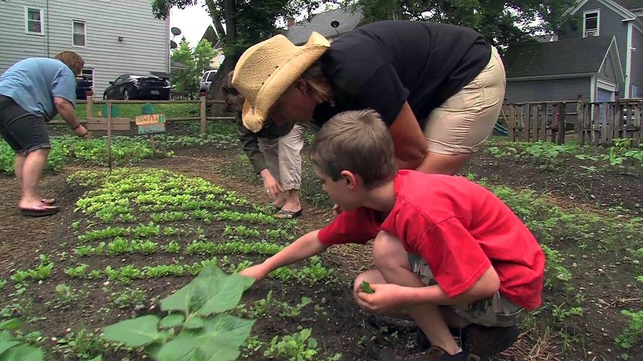 fresh start community garden vermont grown youtube - How To Start A Community Garden