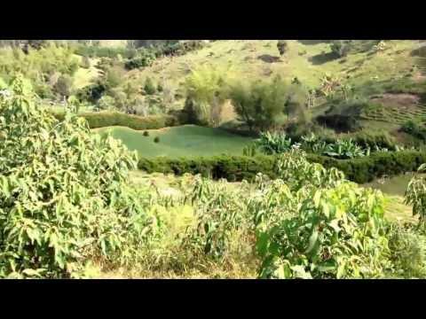 Venta de lote en Rionegro - San José - Cuchillas - Ref. 2519