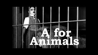 Charlie Chaplin ABCs - A for Animals