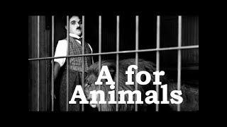 Charlie Chaplin ABCs - A for Animals