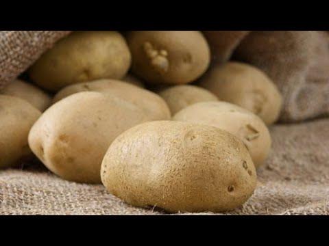 Warum Annabelle nicht nur schön ist - Geschichten um die Kartoffel | Essgeschichten | SWR Fernsehen