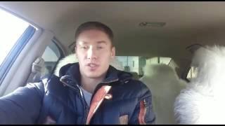 Отзыв | 8-10 прогнозов по линии от Антона Гурбатова