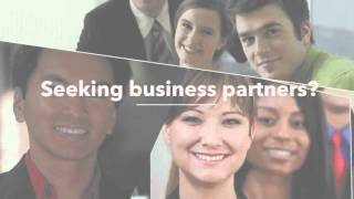 InCruises ~ Seeking Business Partners?