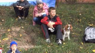 cavalier king charles spaniel  / кавалер кинг чарльз спаниель / Ukraine / Украина