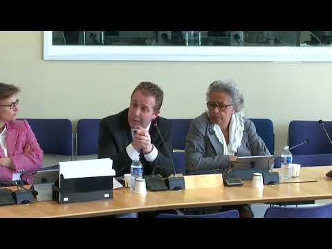 DCT Olivier Gaillard sur la différenciation territoriale / révision constitutionnelle 2