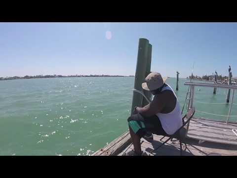 Fishing Merry Pier In Saint Petersburg Fl With Greg & James 4-1-18