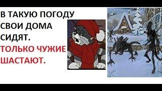 Лютые приколы. Матроскин и Чужие !!!
