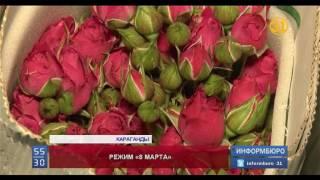 Михаил Бабич - сколько можно заработать на продаже цветов