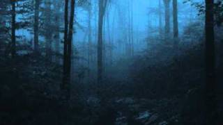 Agalloch - Where Shade Once Was