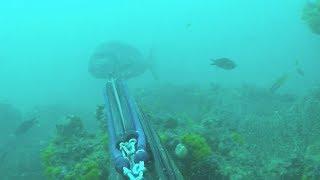 pesca submarina con Olivier Simon del equipo Soriatec