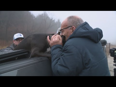 Dog who ran from deadly St. Charles crash reunites with owner