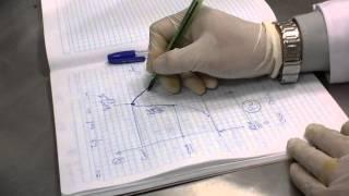 Farmacología  Ratón - Pentobarbital  estricnina