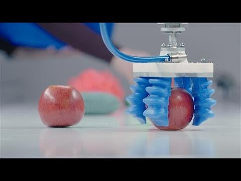 What Picking Up an Apple Tells You About the Future of Robotics