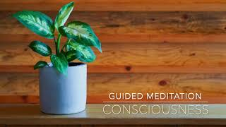 CONSCIOUSNESS: 1 Minute Guided Meditation