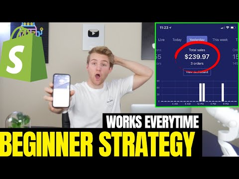 EASY $200/Day Shopify Strategy | 2019 Beginner Dropshipping Guide Step By Step