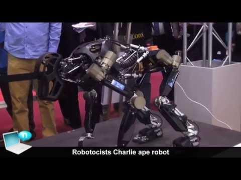 Robotocists Charlie ape robot