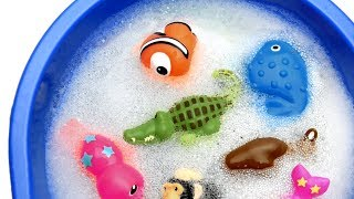 Learn Colors With Wild Animals in Water Tub Shark Toys For Kids