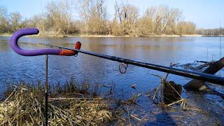 Северский Донец,фидерная рыбалка в нерест.