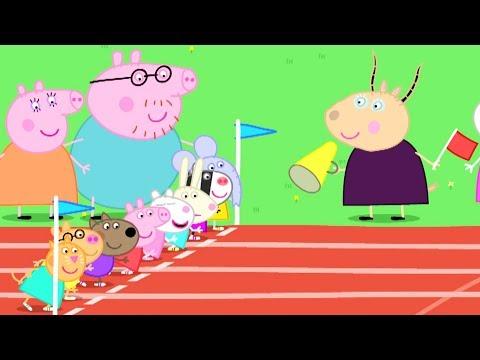 Peppa Pig Nederlands | 3 Afleveringen - Sportdag