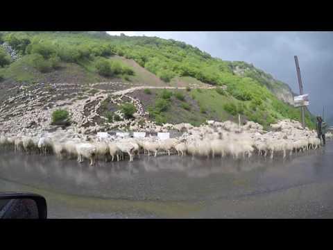 Поезда по Грузии и в Гёйгёль национальный парк