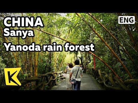 【K】China Travel-Sanya[중국 여행-싼야]버스로 봐야하는 야노다 열대우림/Yanoda/Rain forest/Bamboo