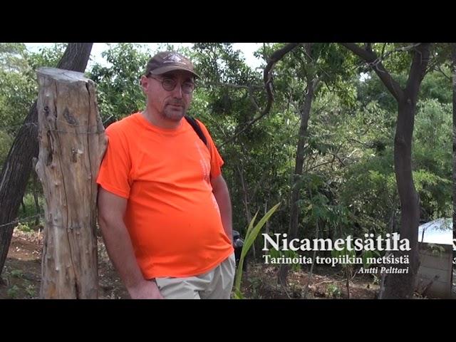 Nicametsätarinoita, osa 9