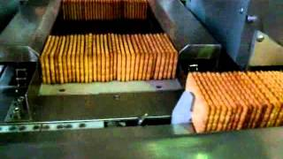 Biscuit packaging machine in Flowpack