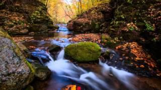 Dvořák - Symphony No 8 in G major, Op 88 - Beecham