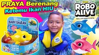 Berenang Prosotan Bersama Mainan Hiu Baby Shark