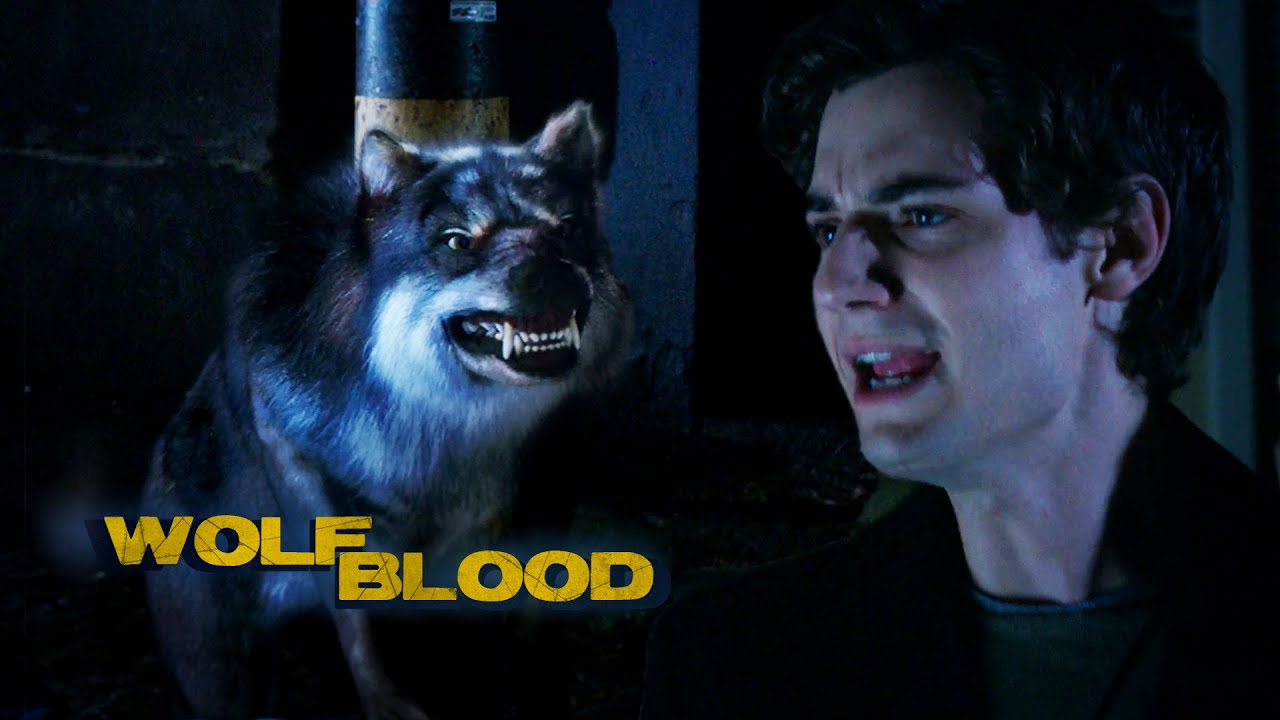Download Humans   Season 5 Short Episode 5   Wolfblood