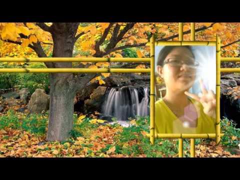 Bạc Trắng Tình Đời Remix Thanh Thảo PhongBui Upload