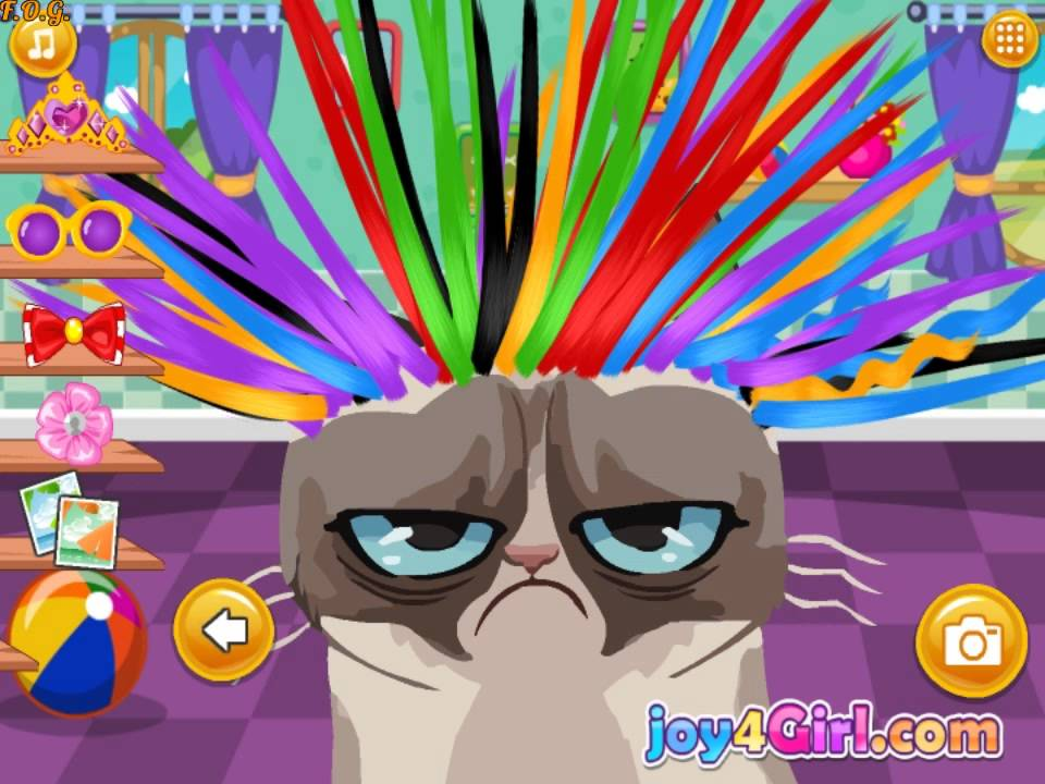 Игра кот в парикмахерской