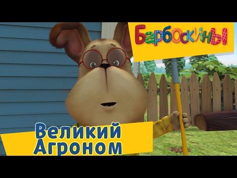 Барбоскины - 173 серия.