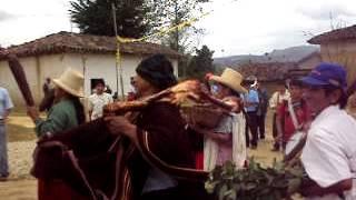 baile tipico de lonya chico 3