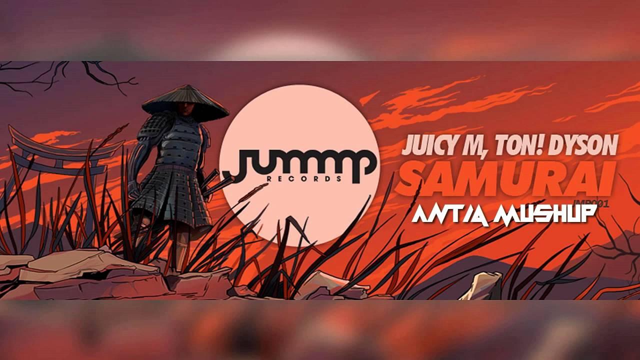 Ton dyson juicy m samurai dyson dc51 multi floor erp