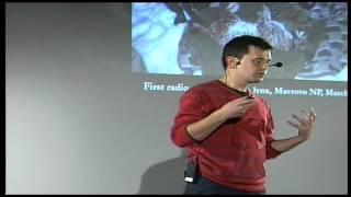 The elusive Balkan lynx: Aleksander Trajce at TEDxTirana