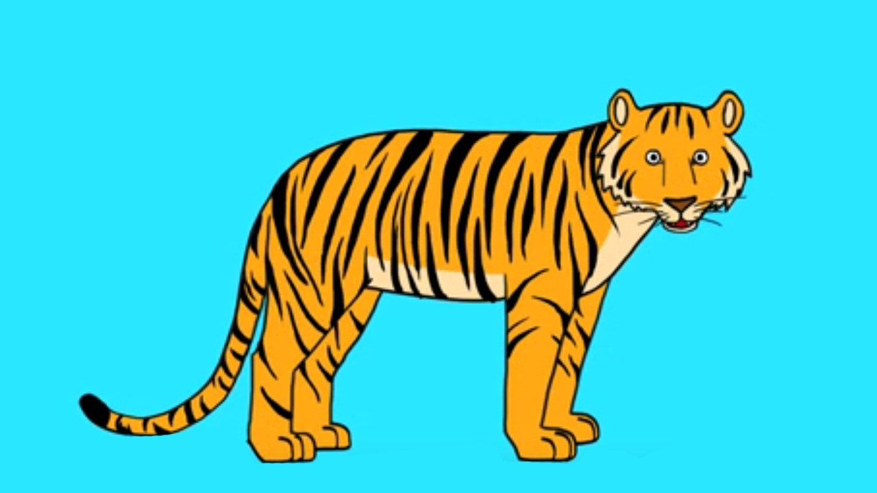 Apprends à Dessiner Un Tigre En 3 étapes Youtube