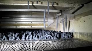ASOS Belt Dryer System For Biomass And Sewage Sludge sector