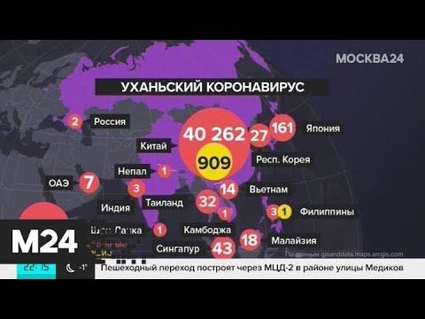 Эксперты назвали время пика распространения коронавируса - Москва 24