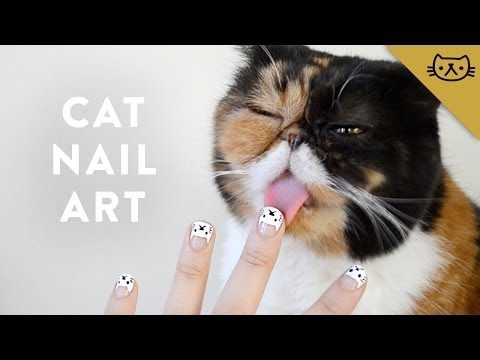 Un nail art chat avec Pudge the Cat